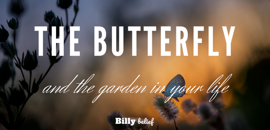 The butterfly in your life.